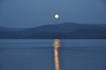 MOONRISE YNYSLAS